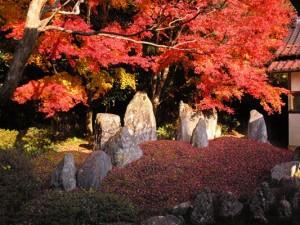 鹿野・漢陽寺1 - コピー